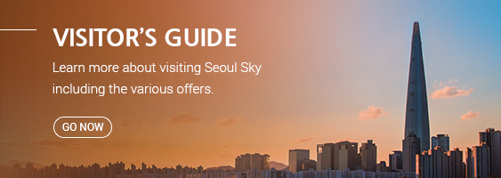 VISITOR'S GUIDE Learn more about visiting Seoul Sky including the various offers. Go Now